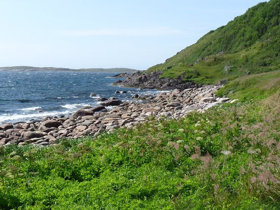 Red Bay, Canada: rocks and green