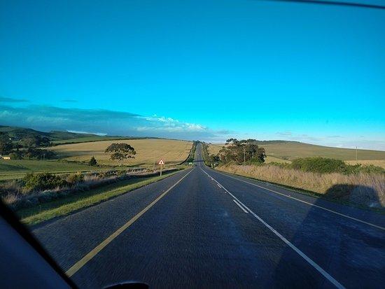 Western Cape, Zuid-Afrika: Garden route