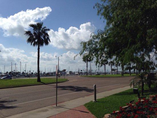 Photo0 Jpg Picture Of Holiday Inn Corpus Christi Downtown Marina Corpus Christi Tripadvisor