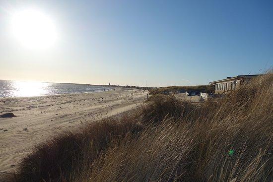 Falkenberg, Suède : En bild över Olofsbo strand där man ser hotellet på höger sida.