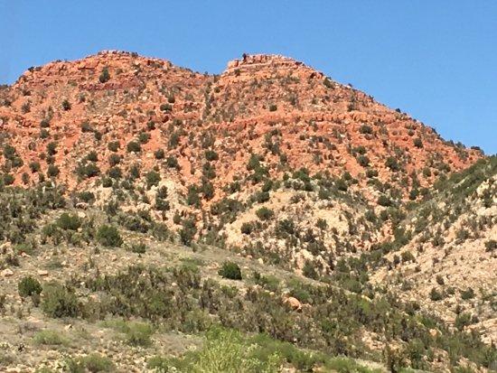 Verde Canyon Railroad: photo4.jpg