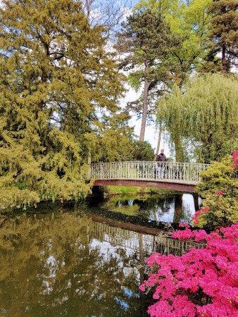 Chatenay-Malabry, France: Arboretum de la vallée aux loups