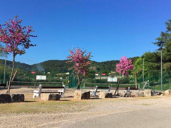 Odesia Vacances Village Club le Domaine du Thronnet: les cours de tennis