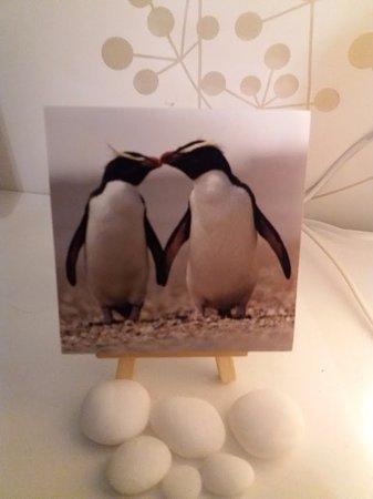 Hokitika, Nueva Zelanda: Fjordland crested penguins
