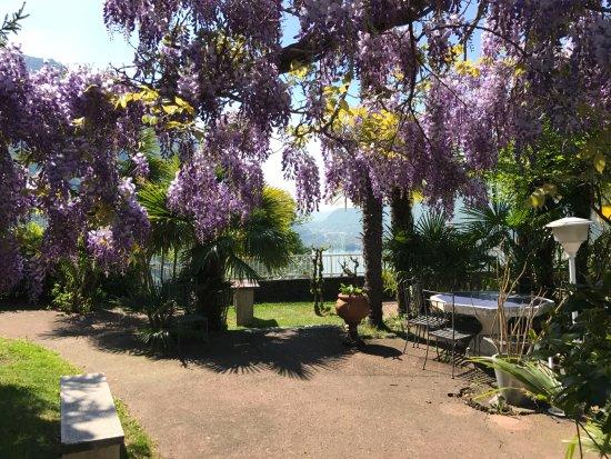 Rovio, Switzerland: Gorgeous park/garden