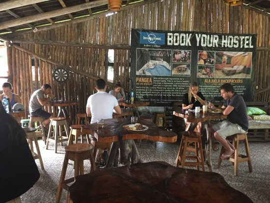 Arenal Backpackers Resort: Area near restaurant/bar and reception