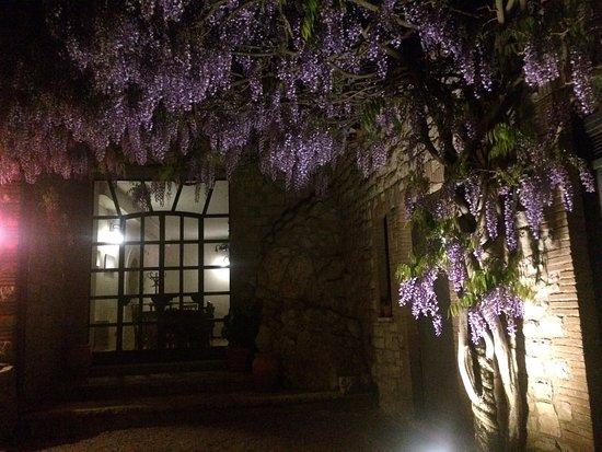 Melezzole, Itália: Profumi notturni