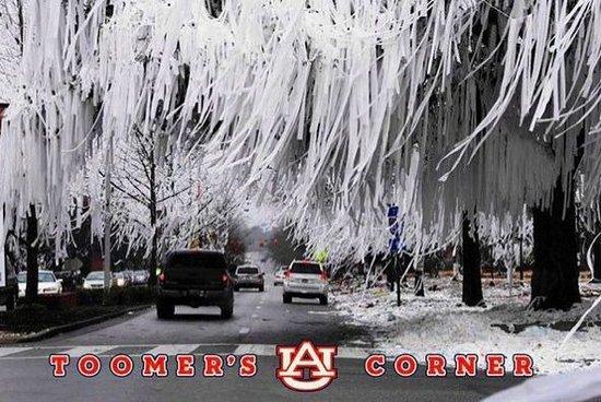 Photo des arbres du Toomer's Corner débordant de papier toilette. (Source: Inconnue)