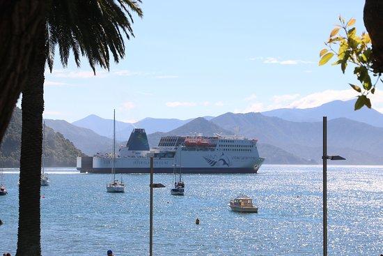 Picton, نيوزيلندا: Picton Sound 15