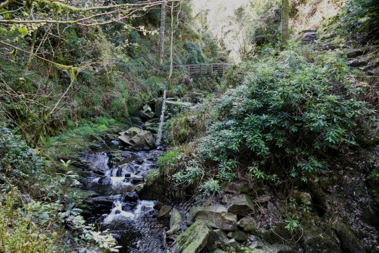 Eskdale, UK: track upto Stanley Ghyll Force Waterfall