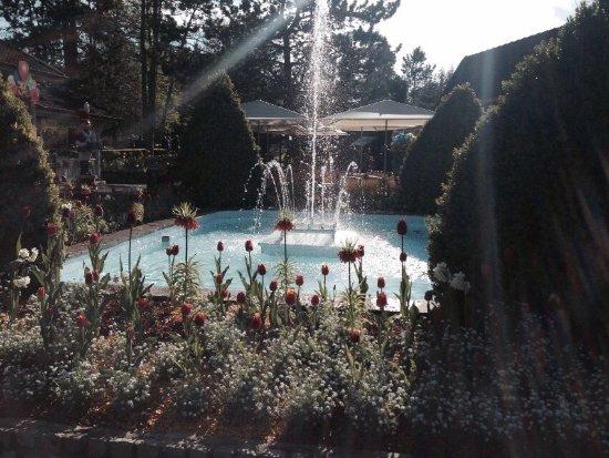 Dolancourt, Frankrike: Anniversaire du parc