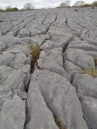Corofin, Irlandia: Limestone