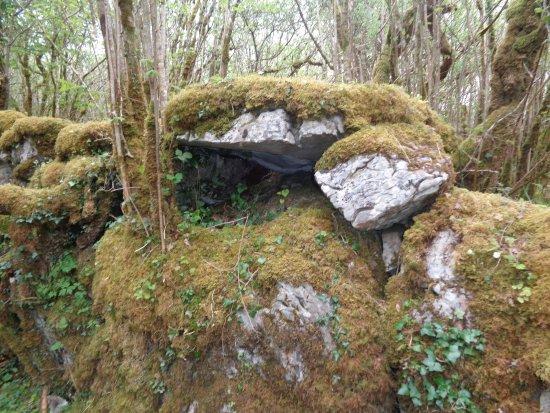 Corofin, Irlanda: Rocks