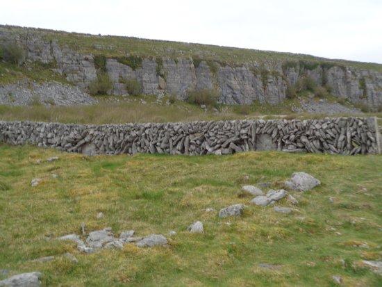Corofin, Irlanda: Fence:)