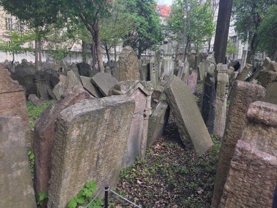 Old Jewish Cemetery: photo2.jpg