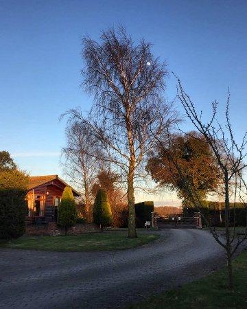 Easingwold, UK: Evening sun