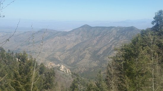Mt. Lemmon Scenic Byway: Example of view.