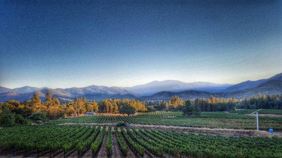 Grants Pass, Oregón: Sunset at Serra Vineyards