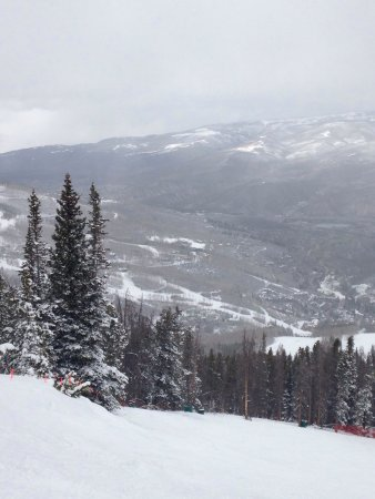 Beaver Creek Ski Area: photo4.jpg