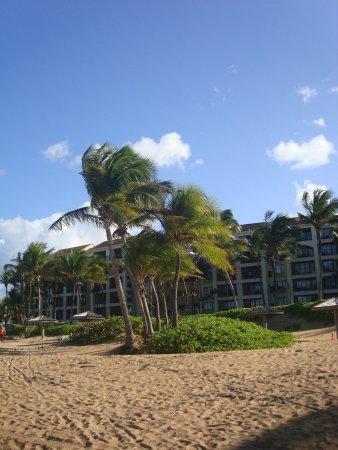 The Ocean Villas : Ocean Villas vistas desde la playa