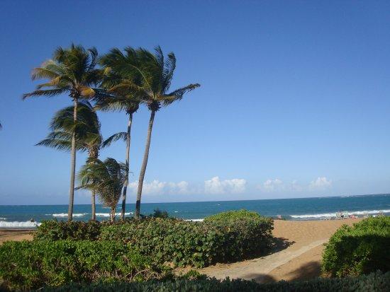 The Ocean Villas : Caminito que une la pileta con la playa