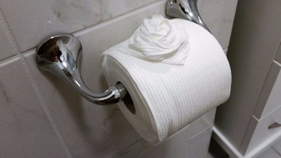Elaine's Bed & Breakfast Inn: Toilet Paper Rose