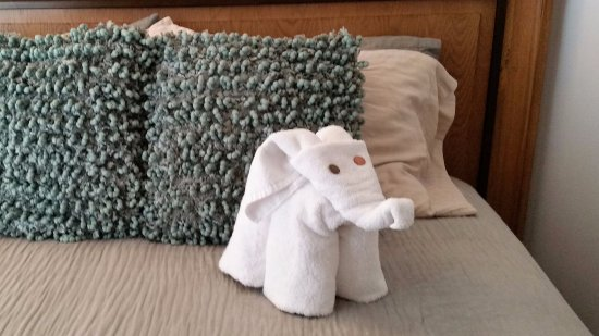 Elaine's Bed & Breakfast Inn: Towel Elephant
