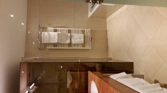 雪絨花酒店照片