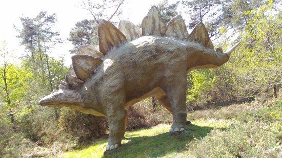 Parc de Prehistoire de Bretagne: P_20170422_144918_large.jpg