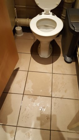 High Wycombe, UK: The wet floored toilet.