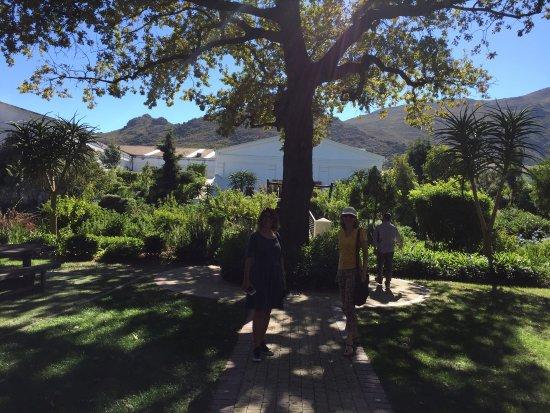 Franschhoek, Sudáfrica: photo5.jpg
