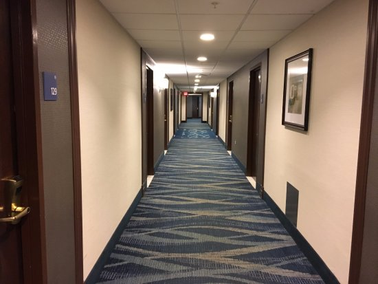 Liverpool, NY: Maplewood Suites - hallway on first floor