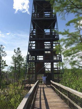 Grand Bay Wildlife Management Area: photo0.jpg