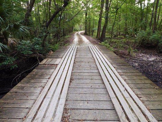 Lake Panasoffkee, Φλόριντα: Bridge over the creek