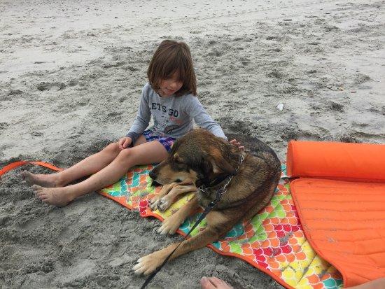 Ocean Lakes Family Campground : photo0.jpg