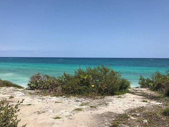 Quintana Roo, Mexico: photo2.jpg
