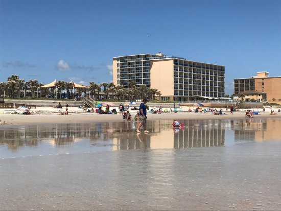 Ormond Beach, Φλόριντα: photo2.jpg