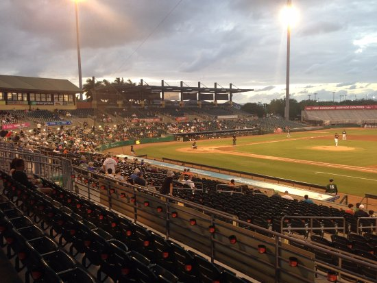 The crowd checking out Jupiter Hammerhead single-A baseball