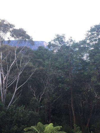 Leura, Australia: photo0.jpg