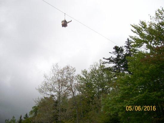 Anchors Above Zipline Photo