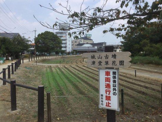 Tsudoshiroyama Ancient Tomb