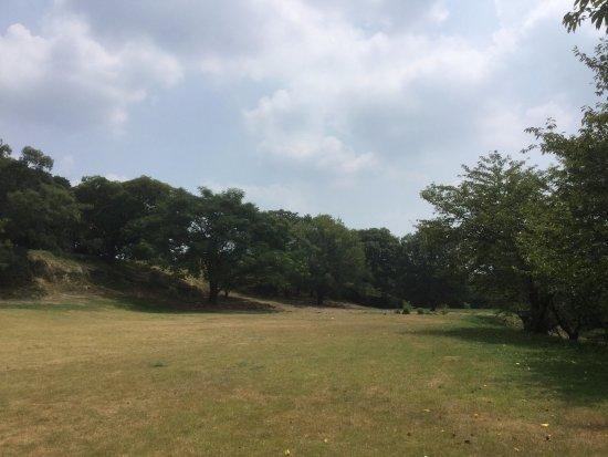 Fujiidera, Japan: 【津堂城山古墳】
