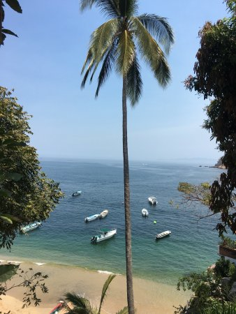 Vallarta Adventures - Las Caletas Beach Hideaway: photo4.jpg