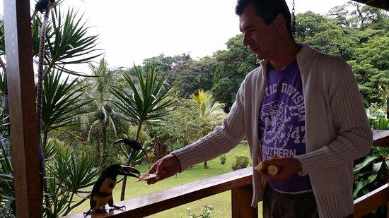 Nuevo Arenal, Costa Rica: Mancher kann sie auch füttern