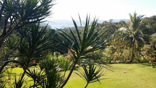 Nuevo Arenal, Costa Rica: Blick von der Terrasse auf den See