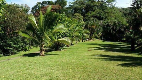 Nuevo Arenal, Costa Rica: wunderschöner Garten
