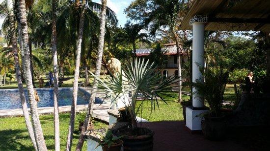Hotel Paraiso del Cocodrilo: Sehr gepflegter Garten!