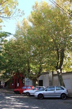 Posada Las Terrazas: Rua calma