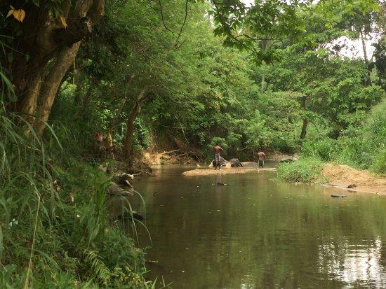 Kegalle, Sri Lanka: photo2.jpg