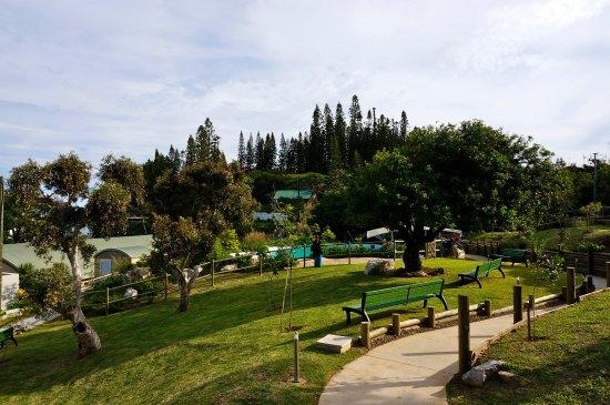 Aquarium des Lagons Nouvelle Caledonie: Aquarium de Nouméa : parc